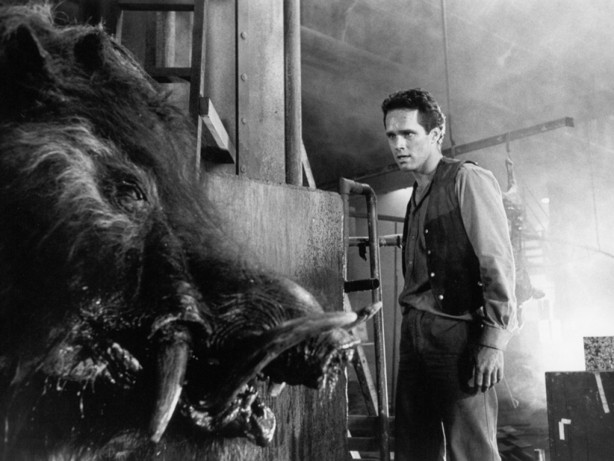 Razorback, 1984, Russell Mulcahy (Foto: National Film and Sound Archive of Australia)
