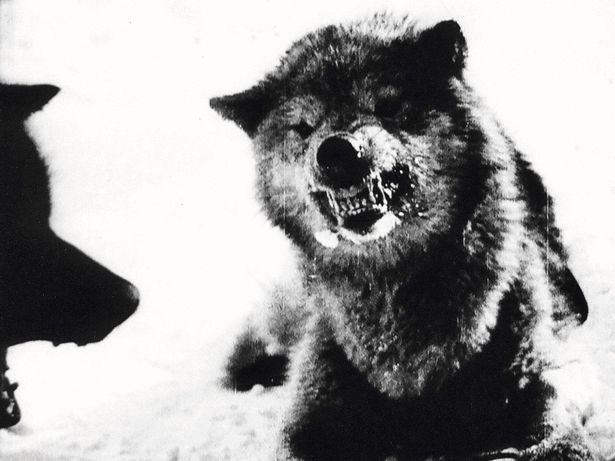 Nanook of the North, 1920–21, Robert J. Flaherty (Kadervergrößerung ÖFM)