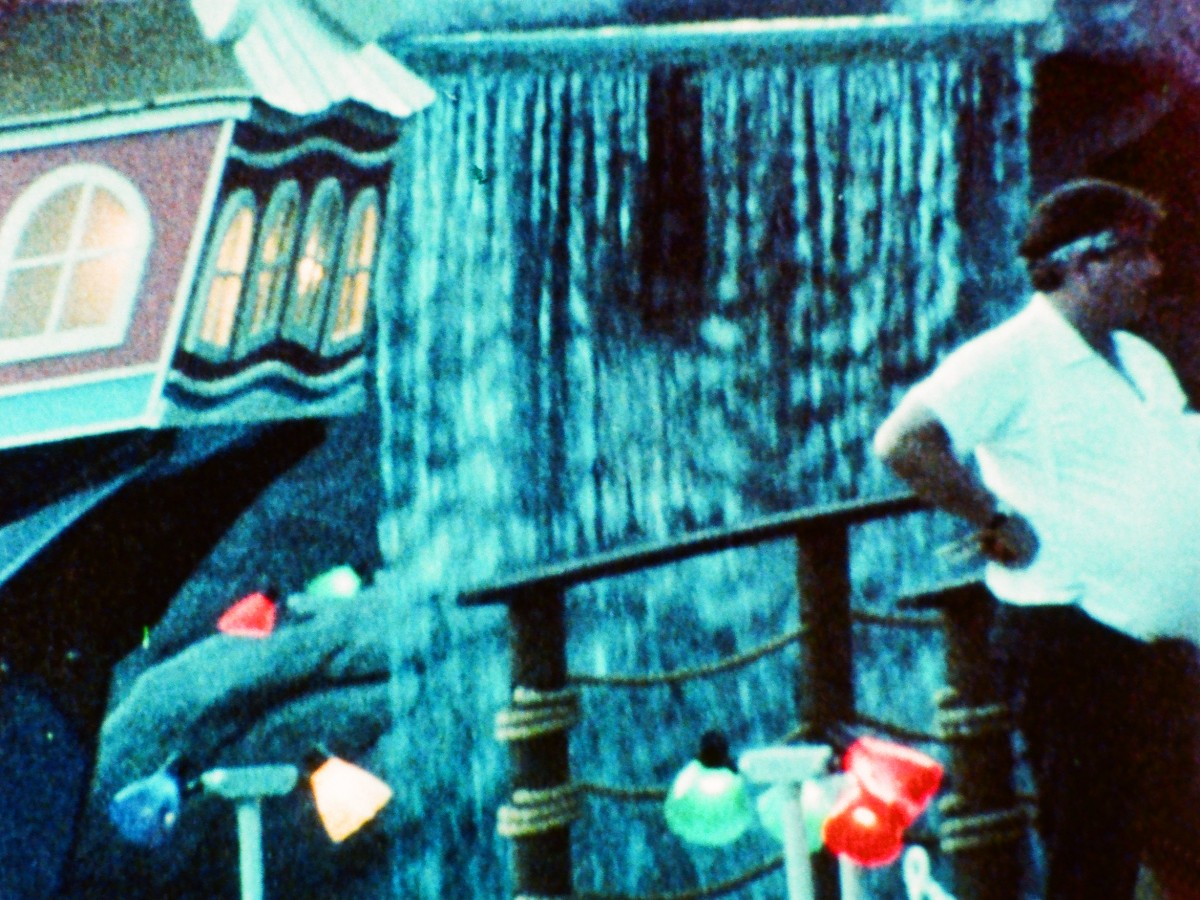 A Child's Garden and the Serious Sea, 1991, Stan Brakhage ( Frame Enlargement OeFM)