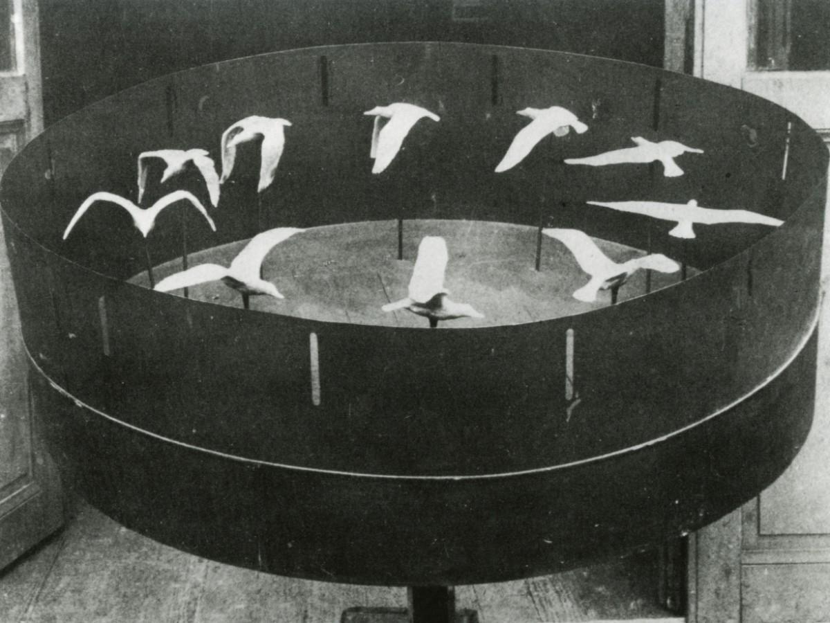 Filmmuseum - Suchergebnis